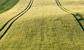 Agrarland bzw. Acker als Geldanlage